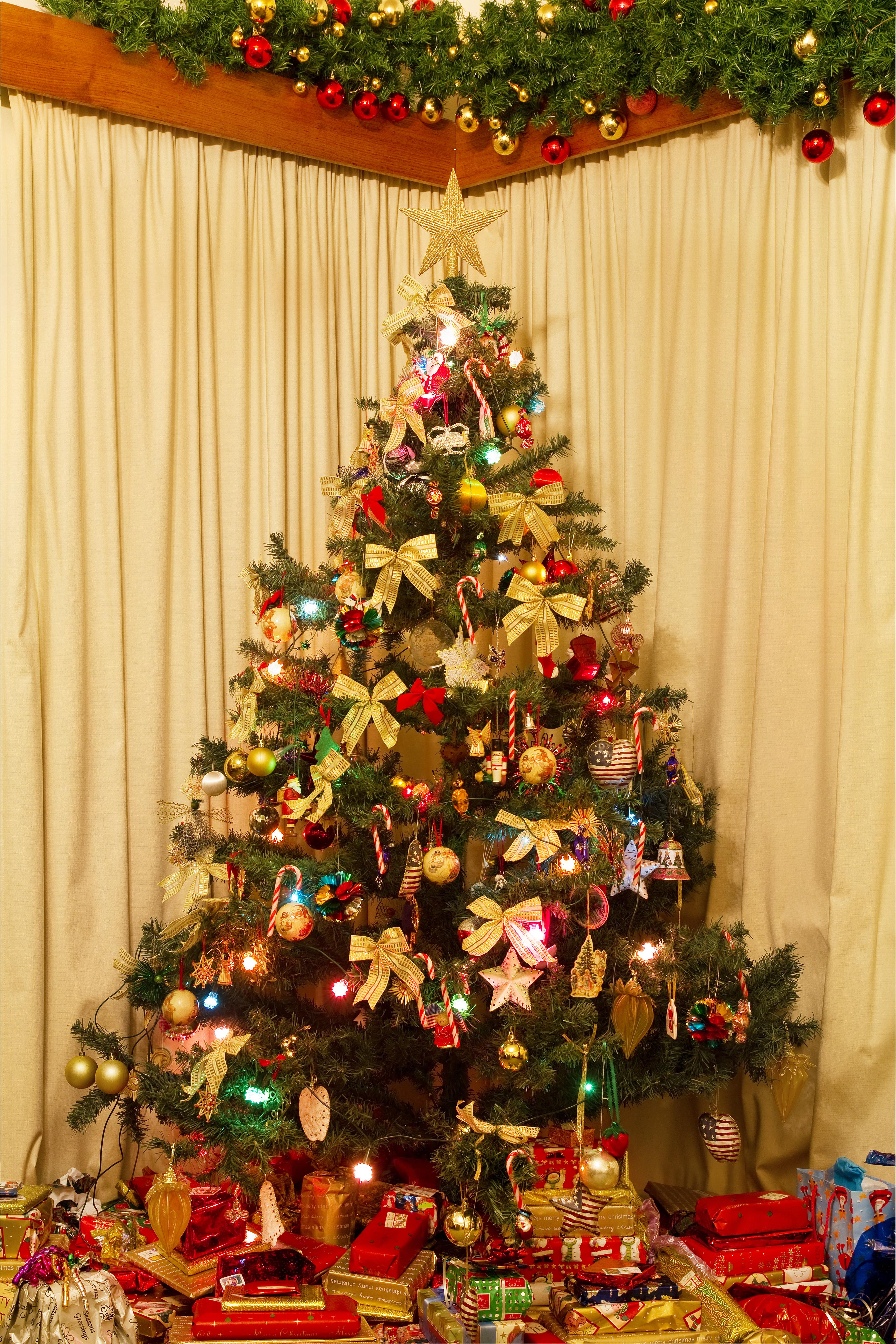 ChristmasTree141123-02